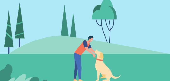 Gode tips til træning af din hund i en travl hverdag