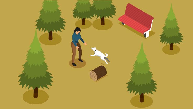 traening-med-hund-i-skov
